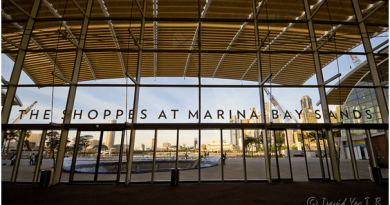 Explore the Shoppes at Marina Bay Sands Singapore- Maybe you get elegant gift of your choice