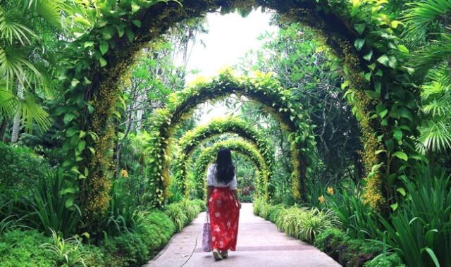 Visit-Singapore-Botanic-Gardens
