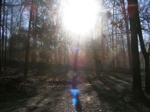 Sunbeam from God
