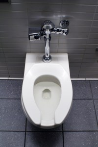 This is a toilet bowl photo downloaded from the internet. With five boys, my toilet will never be clean enough to post a photo of!
