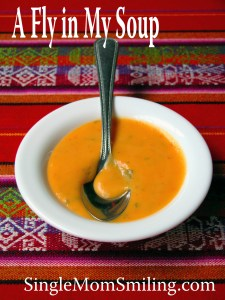 SMS - Fly in My Soup - Oct 5 2015