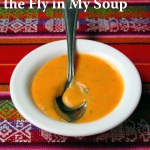 The Meaning Behind the Fly in My Soup