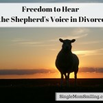 Freedom to Hear The Shepherd's Voice in Divorce