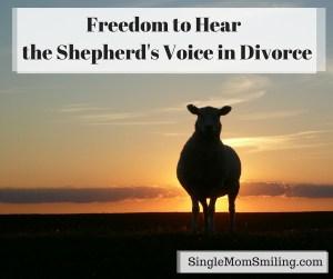 Freedom to Hear Shepherd's Voice Divorce - Sheep Sunset