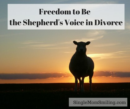 Freedom Shepherd's Voice Divorce - Sheep Sunset