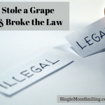 I Stole a Grape and Broke the Law