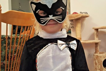 cat fancy dress