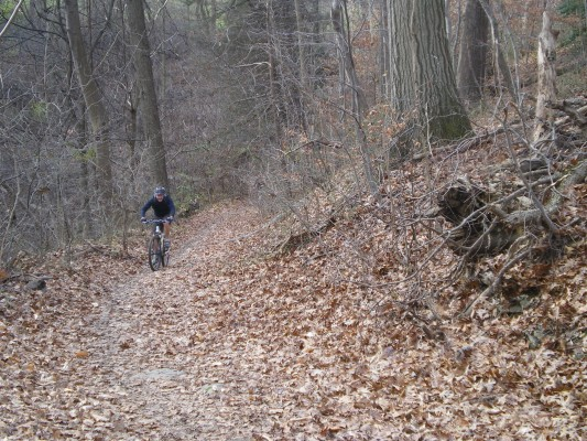 Singletrack in the Wissahickon Valley