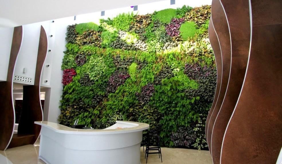 Beneficios de los jardines verticales