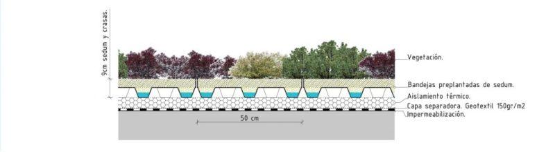detalles constructivos cubierta vegetal bandejas preplantadas