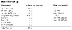 cách chuẩn bị phản ứng Real-time PCR