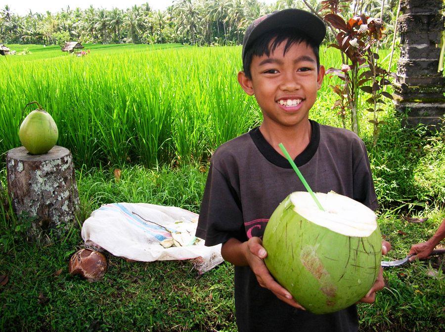 Qué ver en Ubud Indonesia