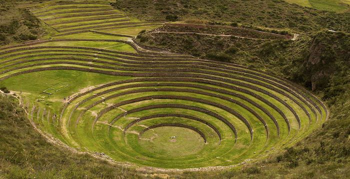 Moray - Foto: wikipedia