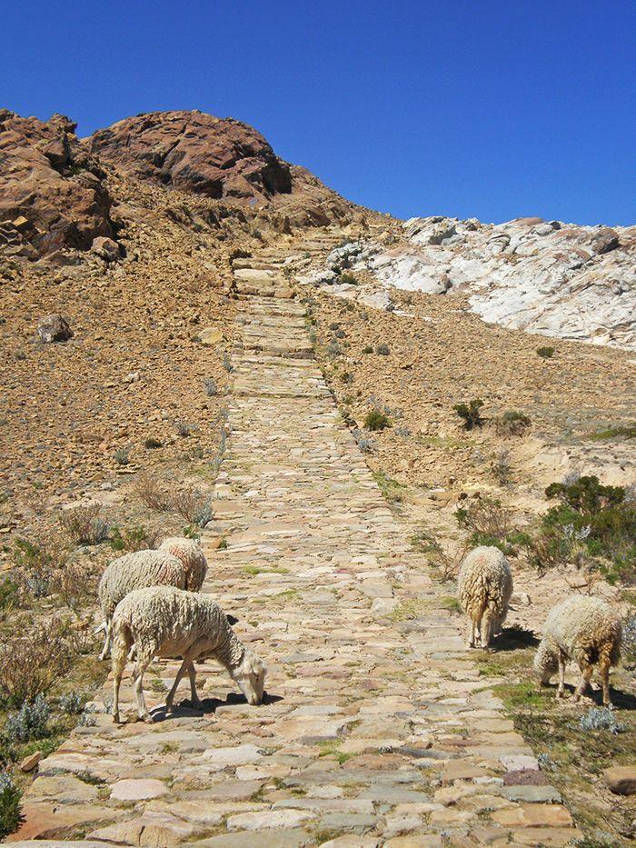 Empieza el camino desde la zona norte al sur - Cómo ir a la Isla del Sol - Qué ver en Isla del Sol - Bolivia