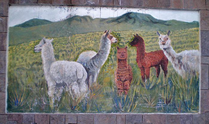 Perú - Chivay (Colca)
