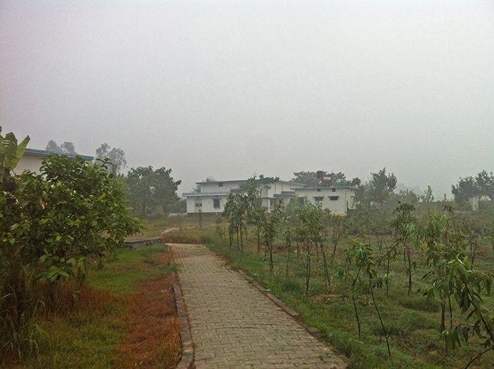 Vistas del hall central de meditación vipassana desde el comedor* - experiencia vipassana