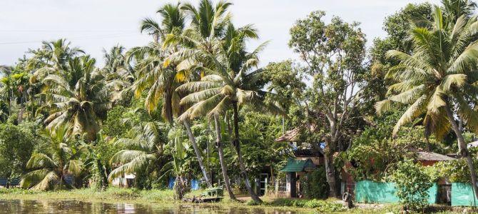 Laberintos de agua: backwaters de kerala
