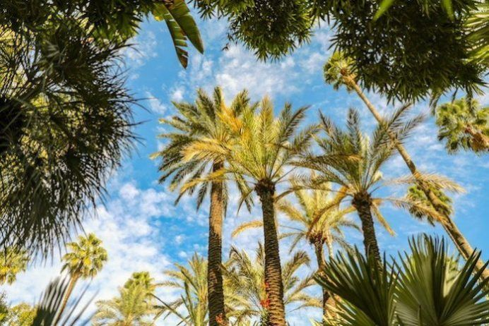 lo mejor de Marrakech