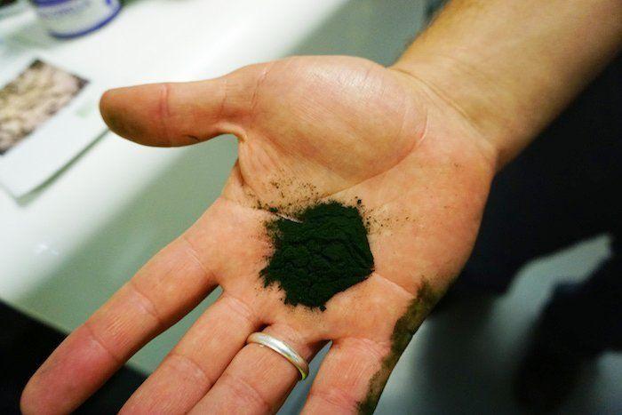 proyectos sostenibles microalgas