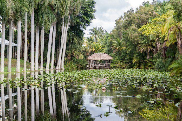 museos de Fort Lauderdale