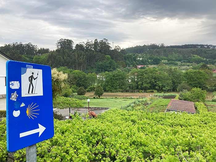 Señales en El Camino de Santiago, Galicia