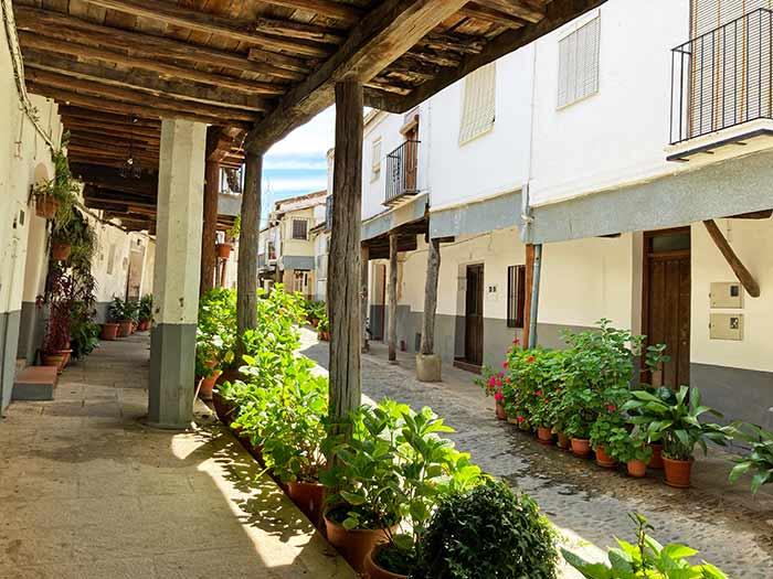Calle Ruperto Cordero, Guadalupe