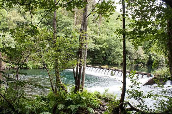 Pequeña presa en río Eume