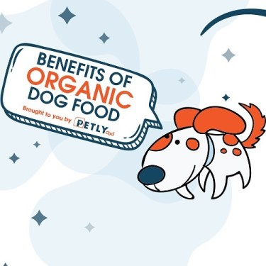 Benefits of Organic Dog Food