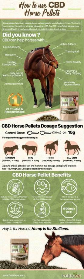 How to use Holistapet CBD Pellets for horses?
