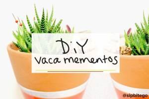 2 Minute DIY: stick #summer travel mementos in plants around the house #DIY #home @sipbitego | http://www.sipbitego.com/summer-vacation-mementos-diy-planter-idea