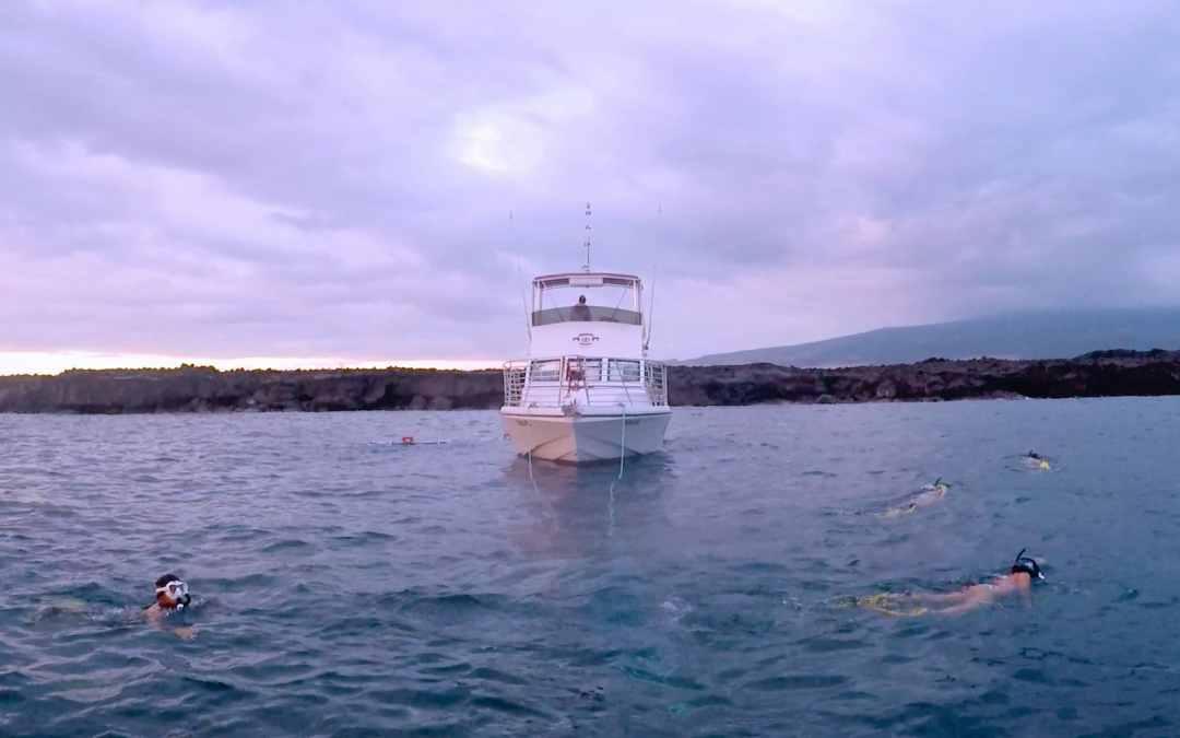 Hawaii Trip: Manta Ray night snorkeling in Kona