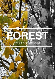 Phoster-Forest-1