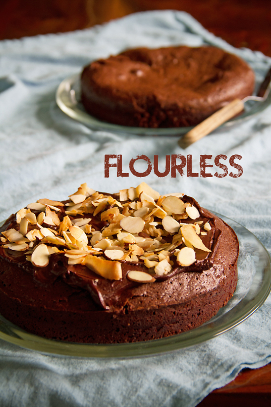 Flourless Chocolate Cake with Almonds and Coconut