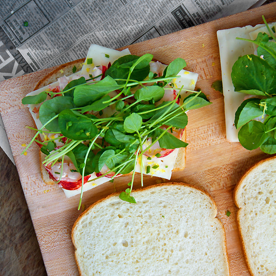 Lobster Grilled Cheese with Havarti and Watercress