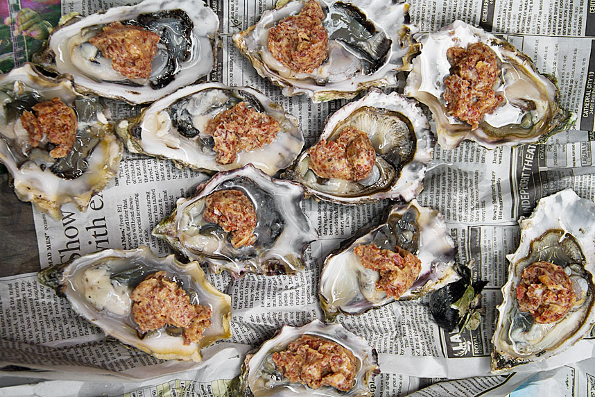 oysters for grilling