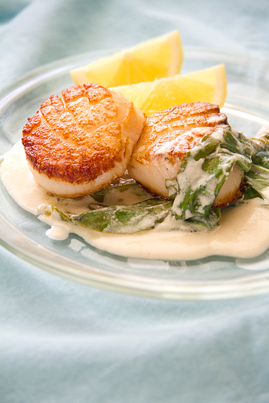 Scallops Sorrel Cream