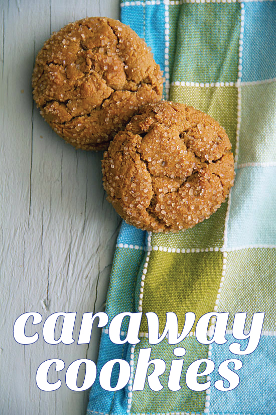 Molasses Spice Cookies with Caraway