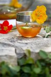 Whiff Of Spring Punch