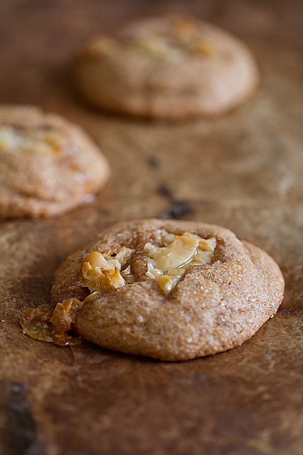 Simple Cinnamon Cookies with Coconut Toffee