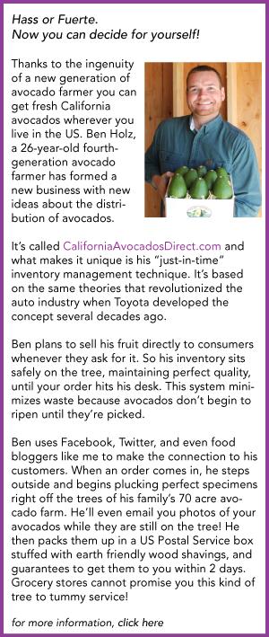 Ben Holz California Avocados Direct