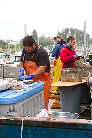 commercial fishermen in Alaska