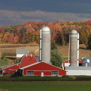 WI Dairy Farm