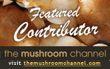 mushroom channel featured contributor