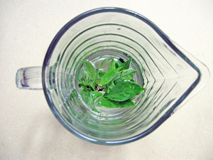 thai basil steeped in vodka