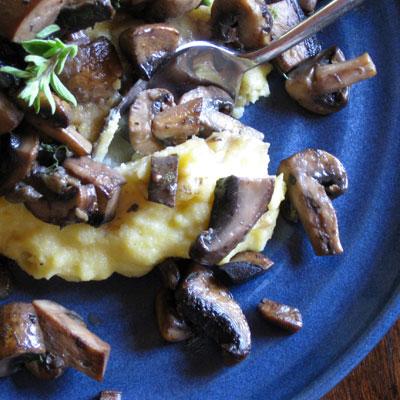 creamy polenta mushroom ragout