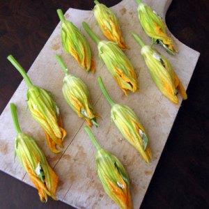 stuffed zucchini squash blossoms
