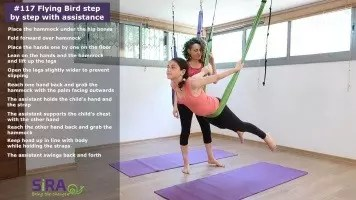 Flying Bird step by step with assistance – exercise #117