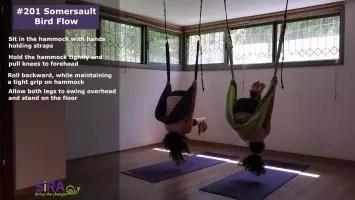 Somersault Bird Flow – exercise #201