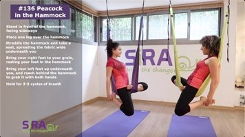 Peacock in the Hammock – exercise #136