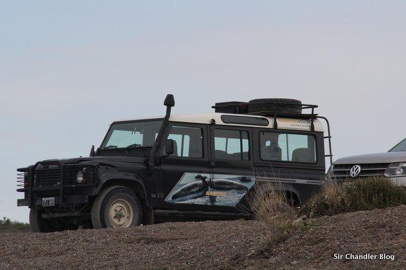 land-rover-madryn